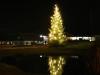 Julgranen på Torget 2009